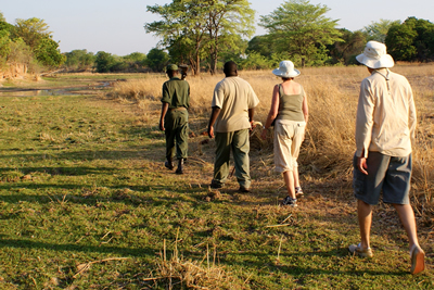 KNP BUSH WALKS